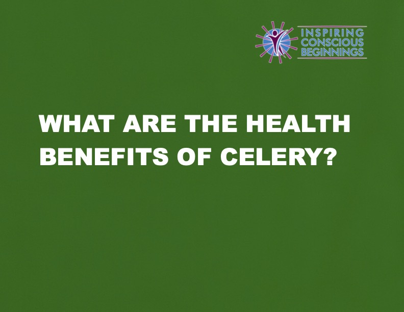 What Are The Health Benefits of Celery?