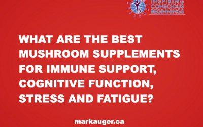 Mushroom Supplements For Immune Support